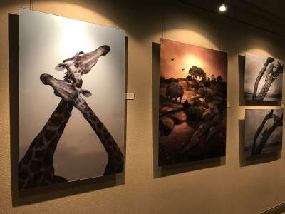 2019 Arizona for Africa charity art auction 1
