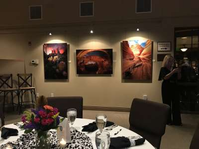 2019 Arizona for Africa charity art auction 4