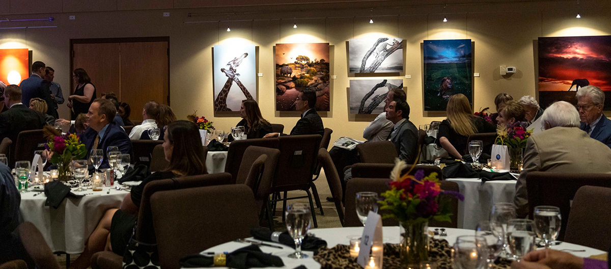 2019 Arizona for Africa charity art auction