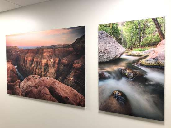 Nature Photography Acrylic Prints by Tom Corey