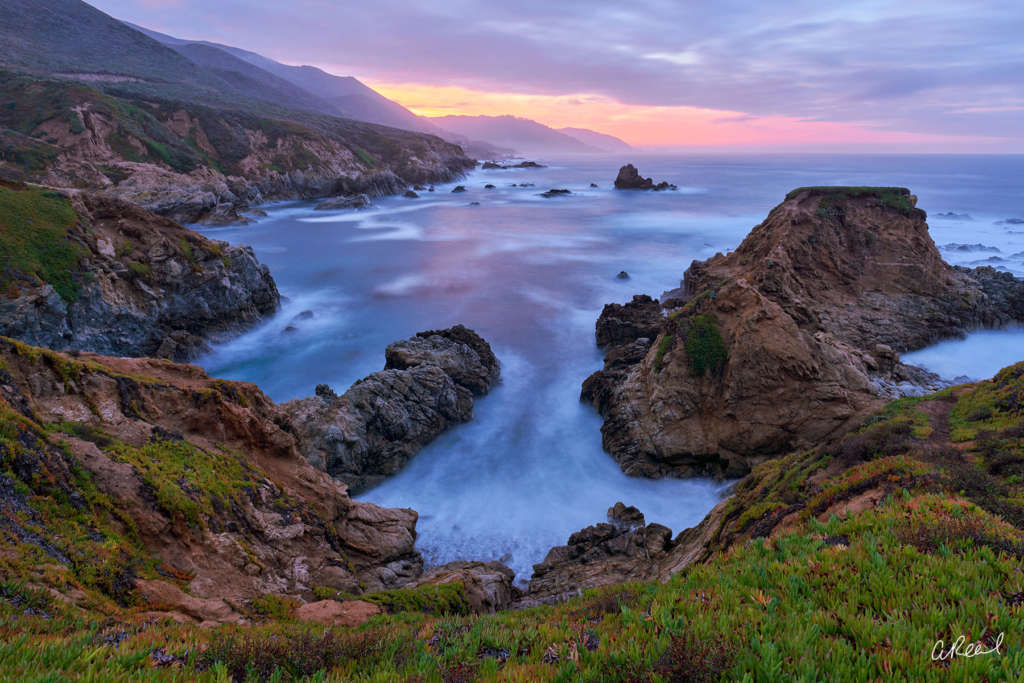 Morning Glory by Aaron Reed
